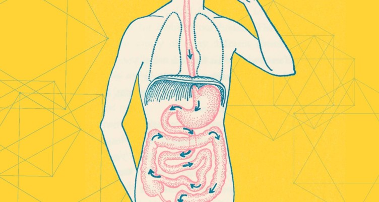 Signs Your Gut Is Unhealthy And Why You Should Fix It